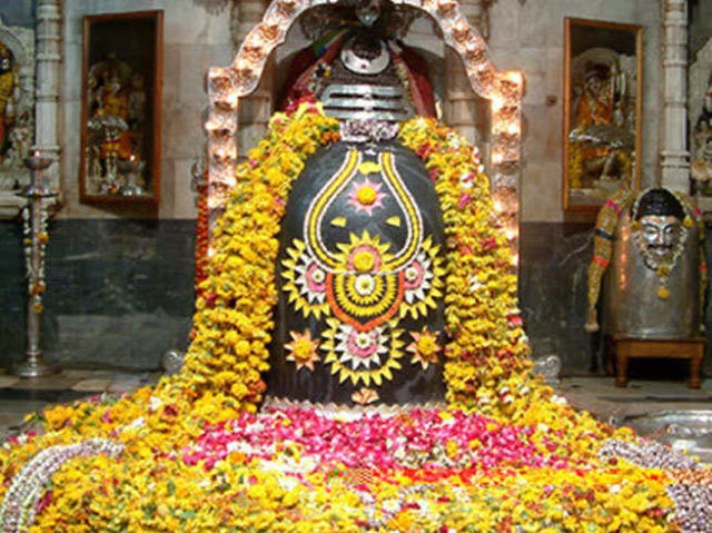 33384-A-mahashivratri-pooja-different-flowers-for-blessings.jpg