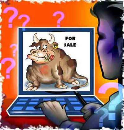 क्विकर: OLX, क्विकर पर गाय और भैंस