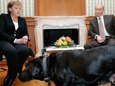 मर्केल, कुत्ता और पुतिन