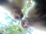 Mischievous monkey steals GoPro and cant resist taking selfies