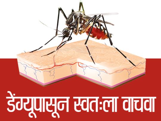 डेंग्यूपासून स्वतःला वाचवा