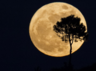 photos of the supermoon will take your breath away