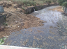 deadline of nullah cleaning ends still cleaning is continue