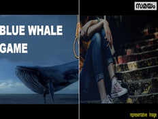 the reality behind the theory of killer game blue whale