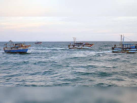 தமிழக மீனவர்கள் விடுதலை
