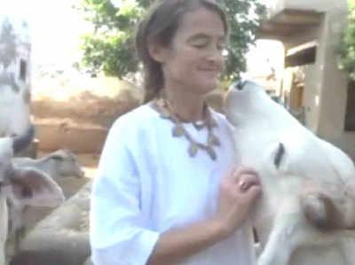 मथुरा: बेसहारा गायों का सहारा बनी ये जर्मन महिला