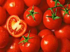 tomato spoiled by refrigerate says science study