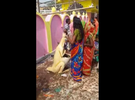 देखें: कंगारूनुमा डस्टबिन की पूजा कर रहीं महिलाएं!