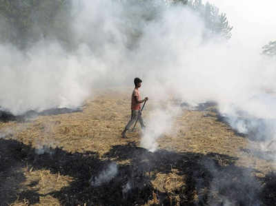 Image result for parali pollution