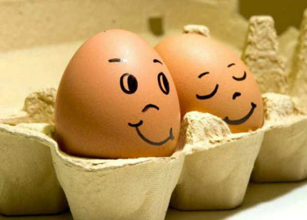 अंडे से बच्चा निकल सकता था