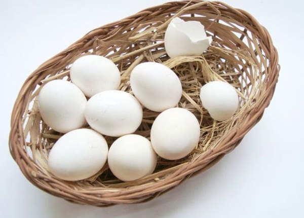 क्या अंडा सचमुच शाकाहारी भोजन है?