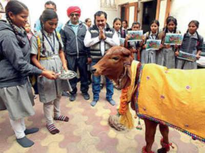 गाय के मुद्दे पर वोट की अपील