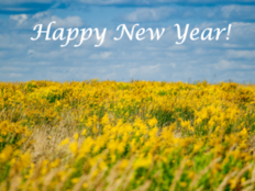 Happy New Year 2018 Wishesand Quotes