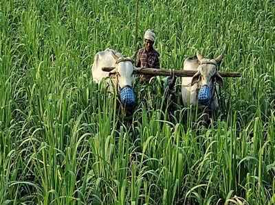 बजट 2018: वित्त मंत्री ने आने वाले सालों में किसानों को फायदा पहुंचाने पर ज़ोर डाला