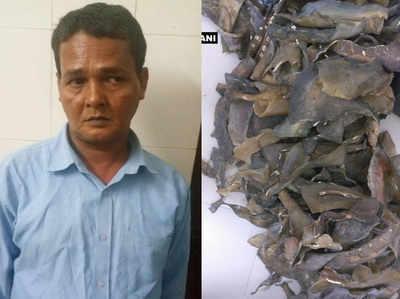 गिरफ्तार सलीम शेख से 27 किलो कछुए की झिल्ली बरामद