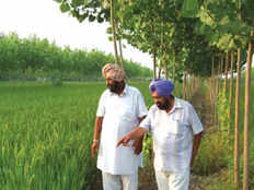 england holland deligates learning farming tricks in india