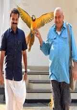 panchavarnathatha movie review in malayalam