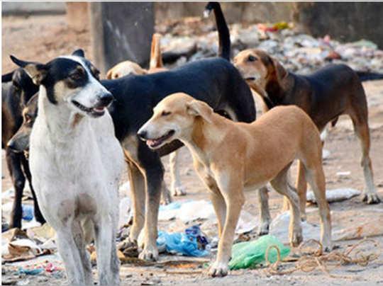 delhi-incident