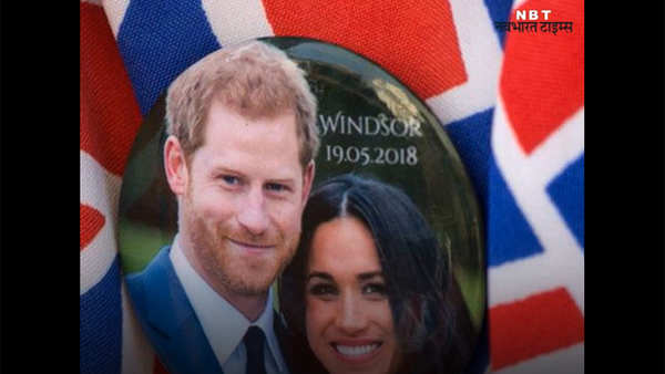 india to give bull as a wedding gift to prince harry meghan markle
