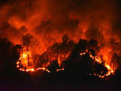 जंगल में लगी आग