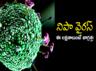 info graphics nipah virus all you need to know