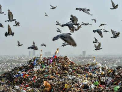प्लास्टिक बन रहा है बड़ा खतरा