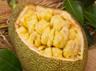 jackfruit and its benefits