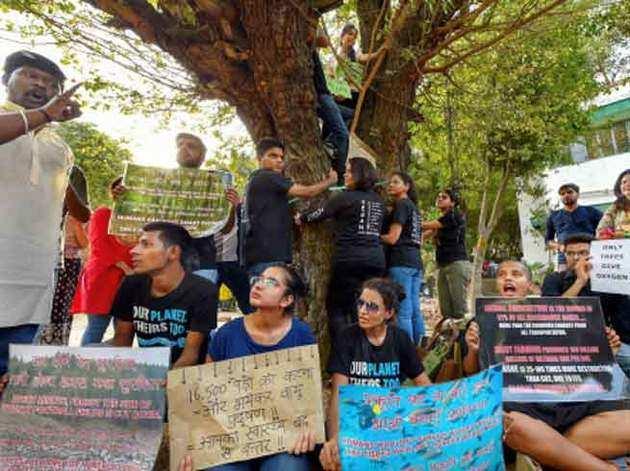 पेड़ काटने का हो रहा है विरोध