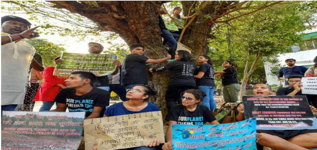 17 हजार पेड़ों की कटाई: दिल्ली हाई कोर्ट ने 4 जुलाई तक लगाई रोक