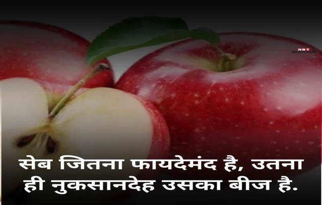 जान भी ले सकता है सेब का बीज, जानें कैसे