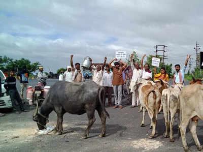 नागपुर में प्रदर्शन करते किसान