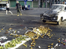 suicide attacks in syria several killed