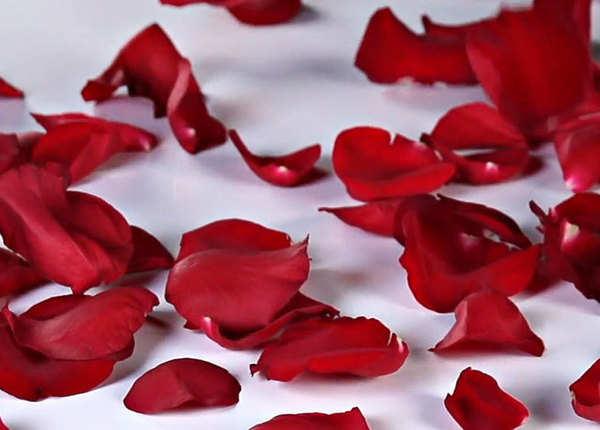 गुलाब की पंखुड़ियां