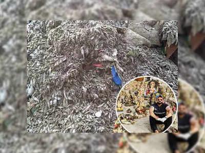 मुंबई के तटों पर बहकर आए जलजीव, इनसेट में चीनू क्वात्रा