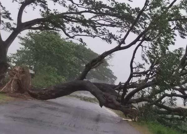 श्रीकाकुलम में सड़क मार्ग बाधित