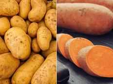 which is better sweet potato or white potato