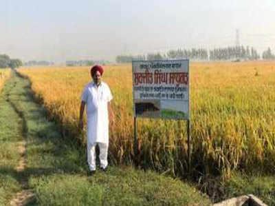 सुरजीत सिंह 15 साल से नहीं जला रहे हैं पराली।