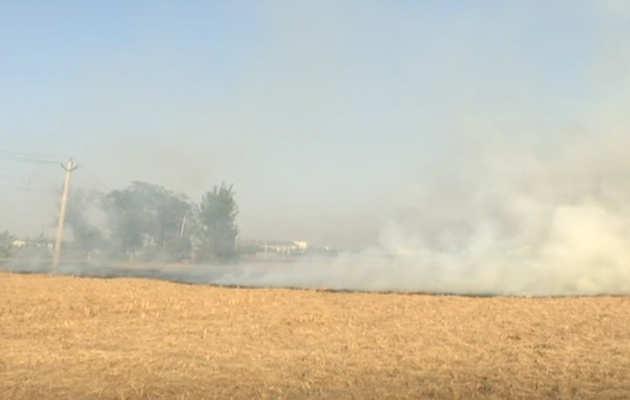 पंजाब-हरियाणा में नहीं थम रहा पराली जलाने का सिलसिला