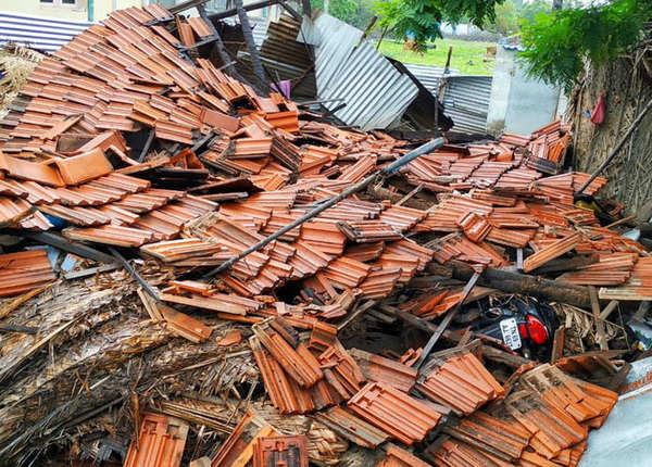 तमिलनाडु: चक्रवाती तूफान ' गाजा' से भयंकर तबाही का मंजर