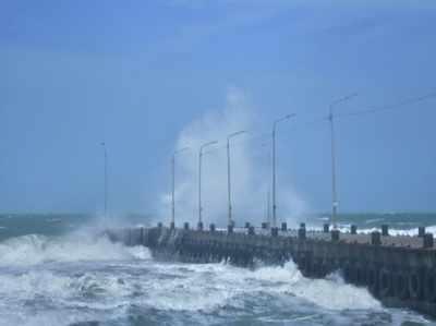 चक्रवाती तूफान गाजा और बारिश ने मचाई भयंकर तबाही