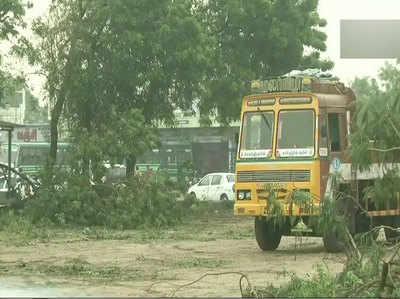 सड़कों पर पेड़ गिर गए हैं और घरों को भी नुकसान पहुंचा है।
