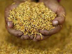 खाद-बीज, बिजली, डीजल महंगा, फिर भी धान की लागत घटने का दावा