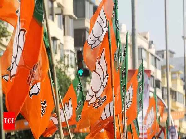 rajasthan polls bjp striving hard to win mewar