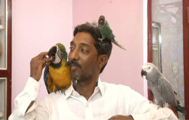 कर्नाटक के इस पशु चिकित्सक के पास हैं 29 विभिन्न प्रकार के विदेशी पक्षी