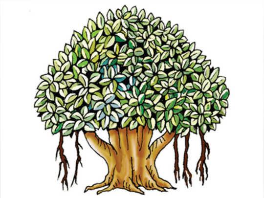 spirtual-tree
