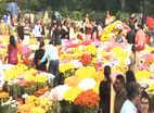 लखनऊ: प्रदर्शनी में लोगों ने फूलों की अलग-अलग क़िस्मों के बारे में जाना