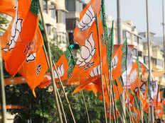 bhartiya janta party win fifty seats in mahanagarpalika election