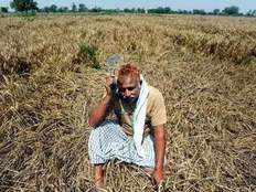 why income support not farm loan waiver may be better for all