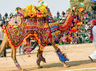 camel festival in bikaner rajesthan india