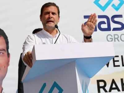 Satta Mein Aae To Andhra Pradesh Ko Vishesh Raajya Ka Darja Deinge Rahul Gandhi